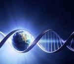 SỰ KIỆN TOÀN CẦU - THĂNG LÊN TẬP THỂ - KÍCH HOẠT DNA - CHUYỂN ĐỔI CƠ THỂ ÁNH SÁNG